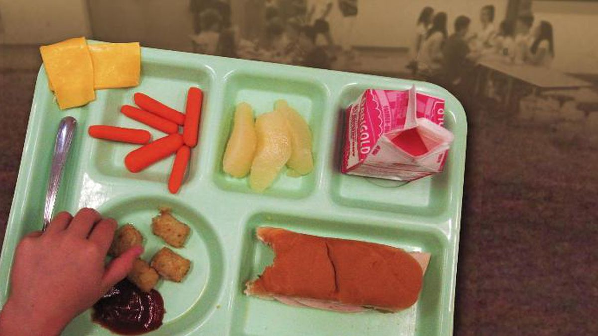 Nearly a million children could lose their automatic eligibility for free school lunches under a Trump administration proposal that would reduce the number of people who get food stamps. (Source: AP Graphics)
