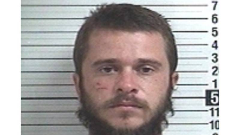 Officials say 25-year-old Ashden Pippins was sentenced to life in prison without the...