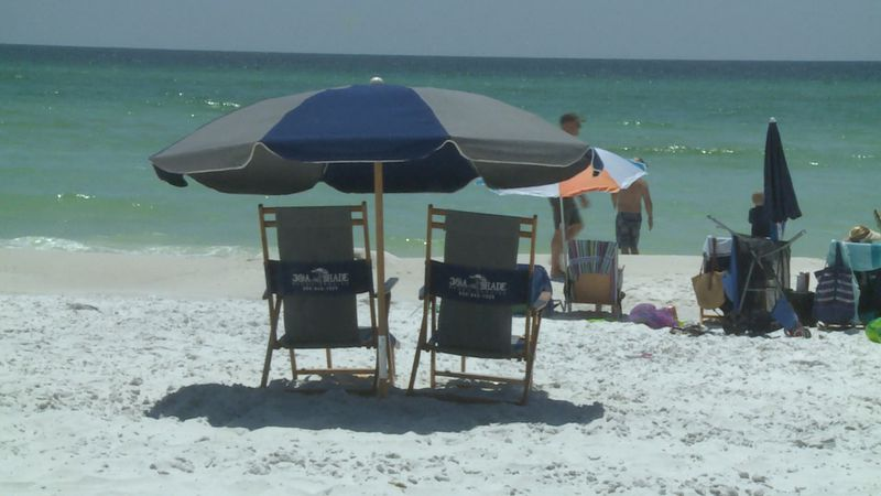 South Walton beaches could be limited to one single vendor.
