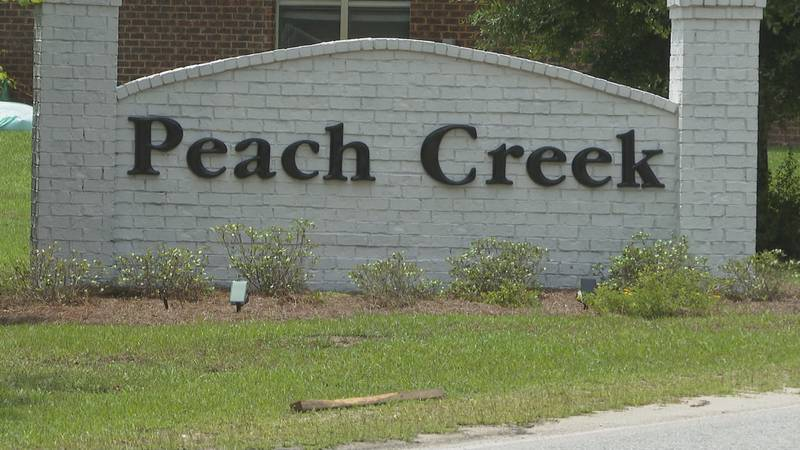 Neighbors want the Peach Creek subdivision to be safer.