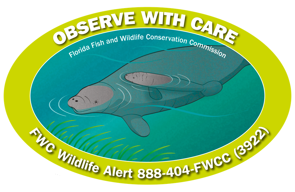 The Florida Fish and Wildlife Conservation Commission has released the 2020 manatee decal. All proceeds held conservation efforts.