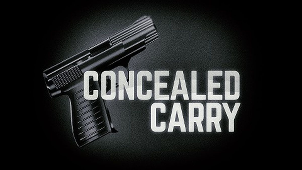 Floridians will once again be able to apply for a concealed carry permit online starting...