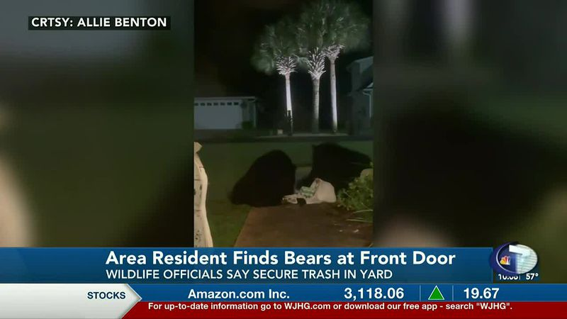 A Santa Rosa Beach resident woke up Tuesday morning to find two black bears at her front door...