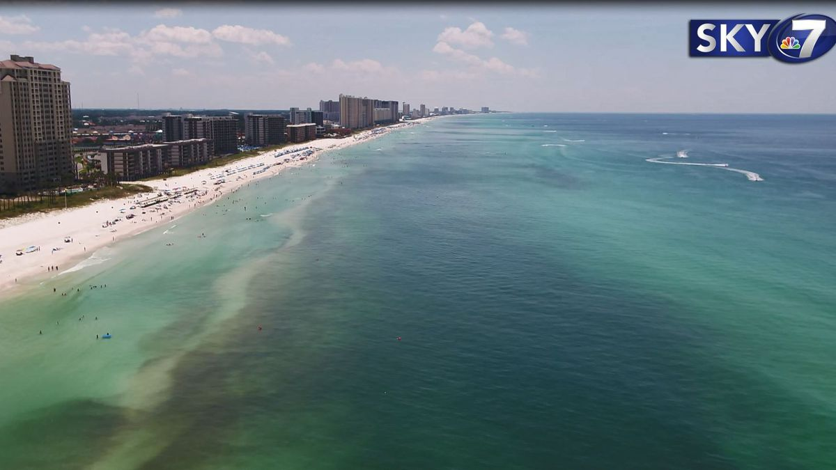 Friday the National Oceanic and Atmospheric Administration reported an increase in strandings in the gulf for one species. <br />(WJHG/WECP)