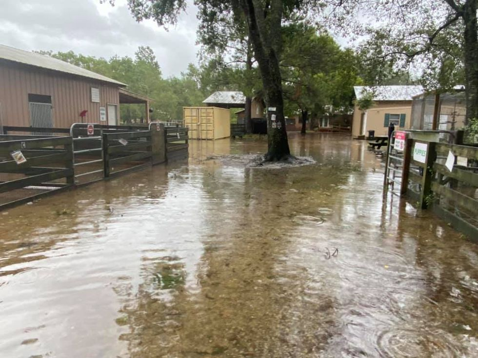 Alaqua Animal Refuge is a no-kill animal shelter in Walton County. The refuge received heavy rainfall from Hurricane Sally, causing flooding and animal evacuations.