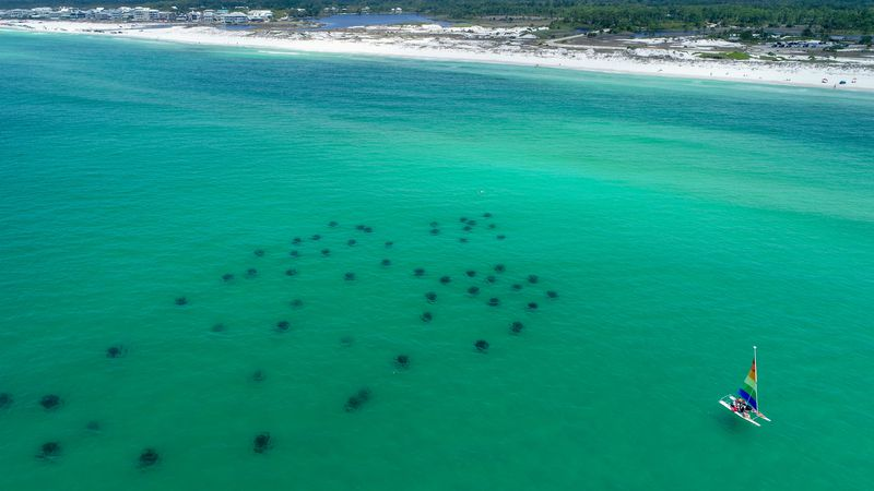 Off the shore of Grayton Beach State Park, in South Walton, Florida, reef pods form the shape...