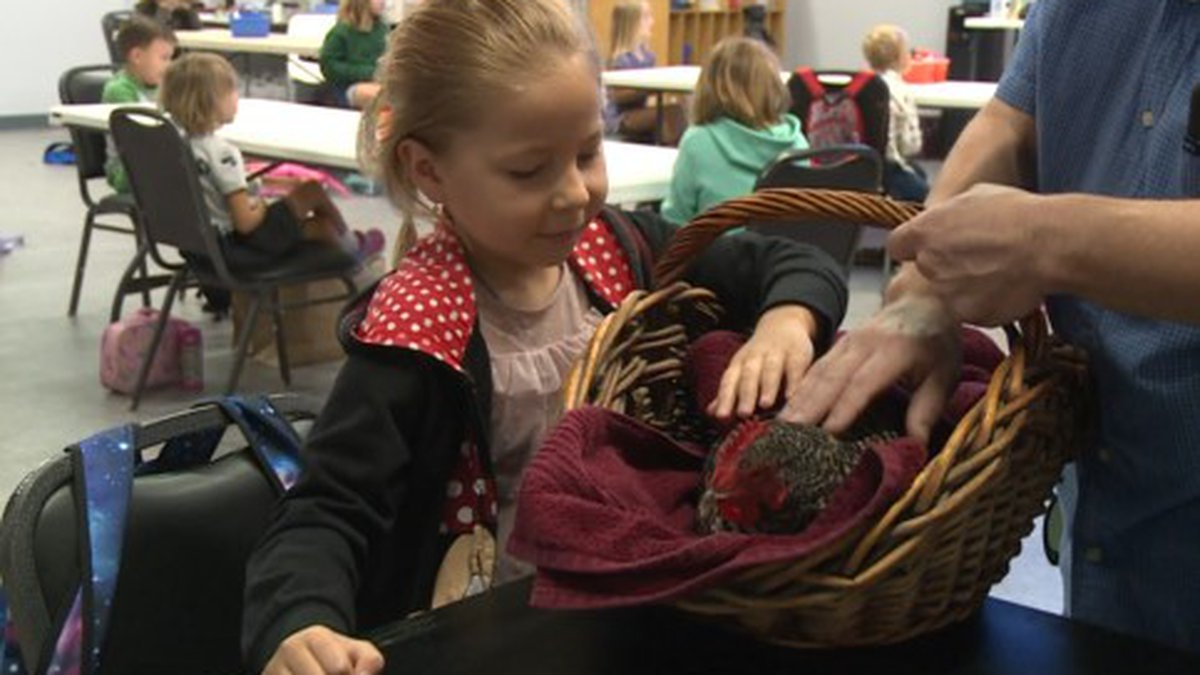 At farm camp, campers get to see animals up close and personal (WJHG).