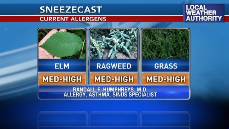 Pollen levels are forecast to be on the medium to high end over the next several days.