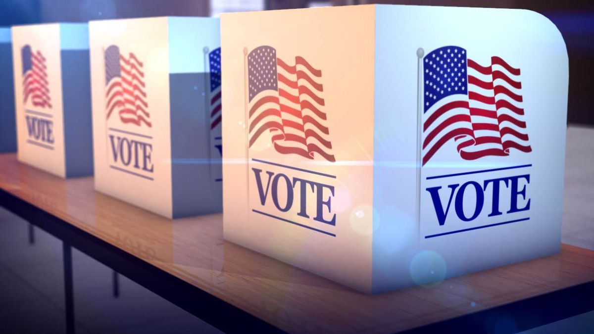 Every voting machine in Florida is already capable of capturing digital images of the paper ballot inserted by voters, but the settings make the capture optional. (MGN)