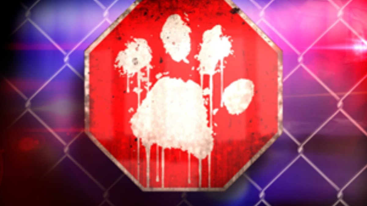 Jackson County authorities are investigating a deadly dog attack.
