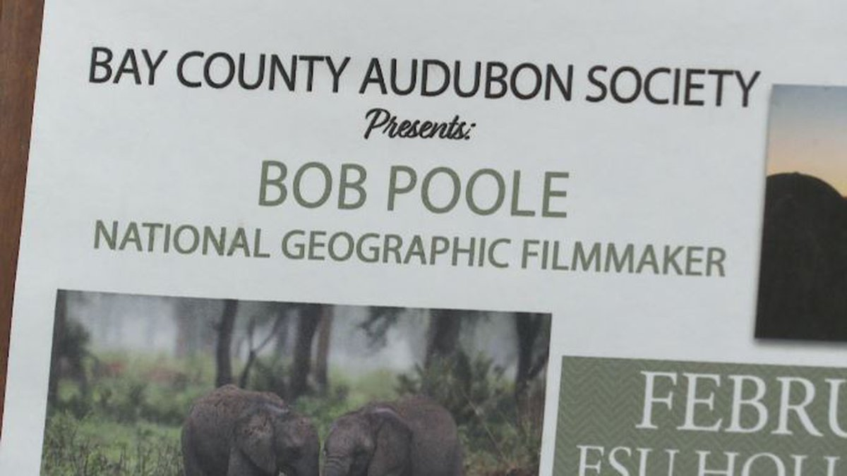 One Audubon Society member says Bay County can learn a lot from Poole's message. (WJHG/WECP)