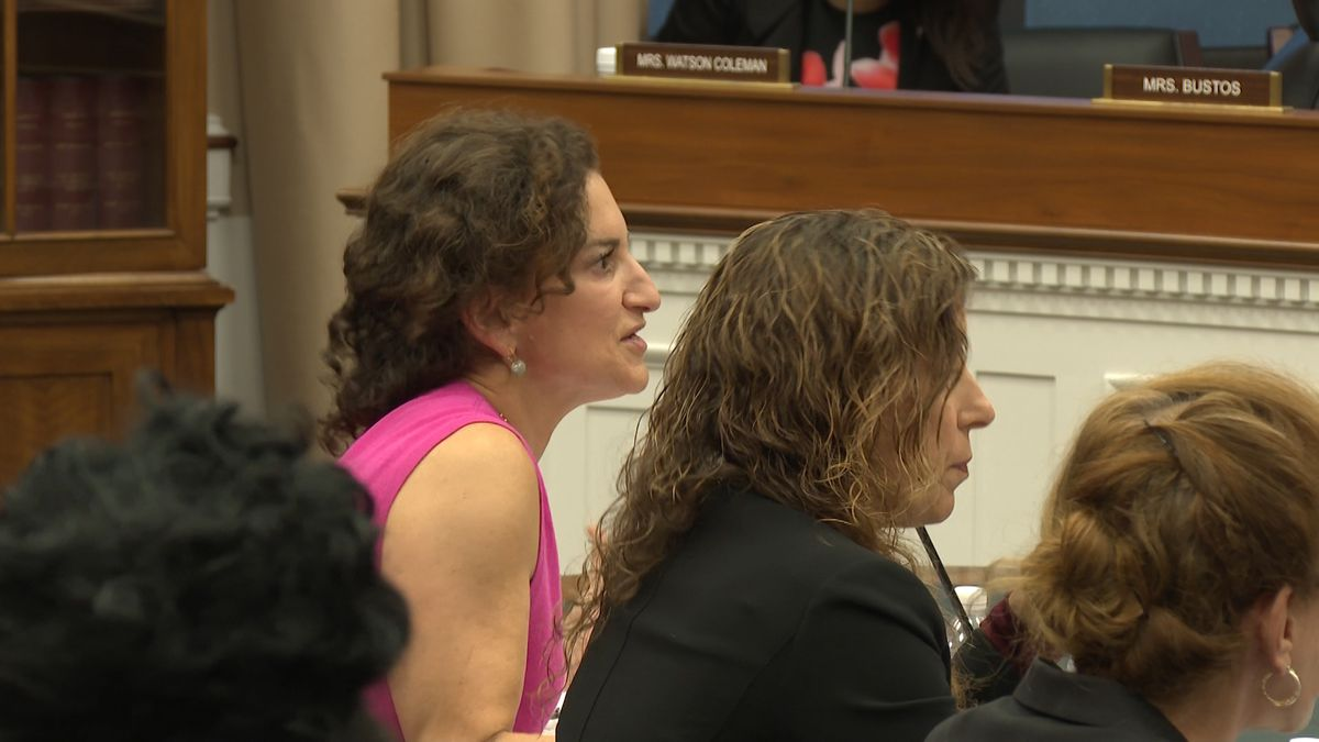 Meredith Berkman, a mother and founder of Parents Against Vaping E-Cigarettes, testifies before a House Committee Hearing, Thursday. (Source: Gray DC)