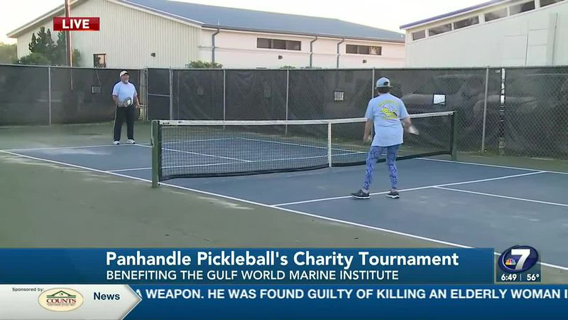 Panhandle Pickleball's first annual charity tournament will be Saturday, April 17 and Sunday,...