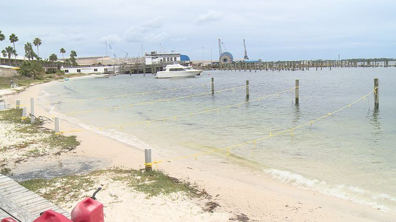Scotty Boat Rentals had its whole fleet of pontoon boats rented out on Memorial Day. (WJHG)
