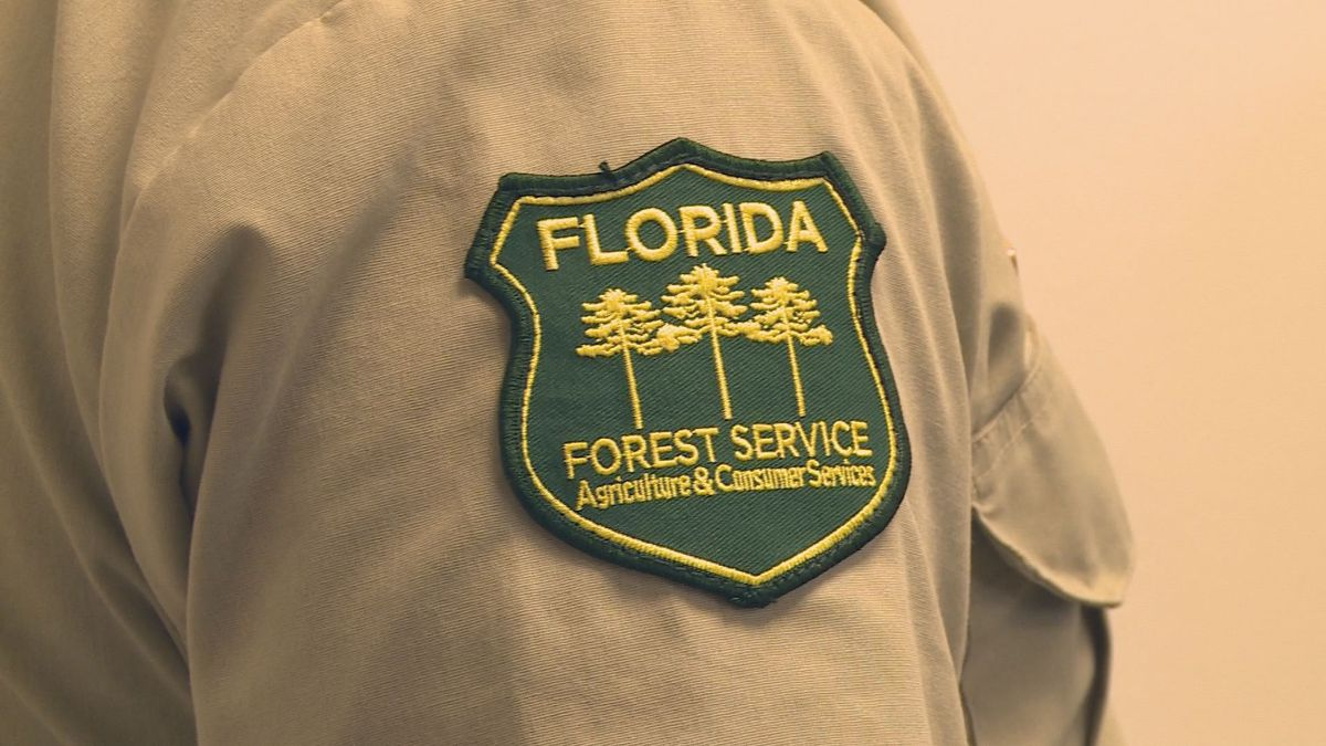 The Florida Forest Service wants local fire departments to be prepared for impending wildfires this summer. (WJHG/WECP)