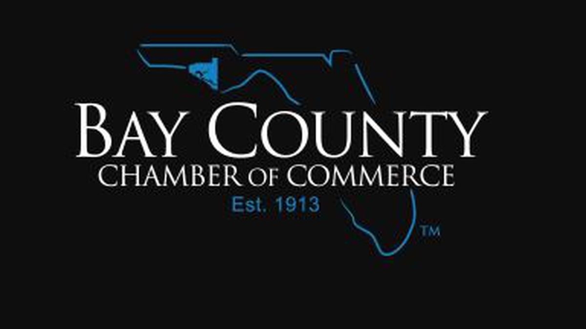 This makes the fourth time the organization has applied for this award and won. (Bay County...