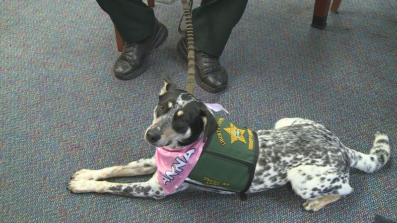 Therapy K-9 Anna began working with the children in March of 2021.