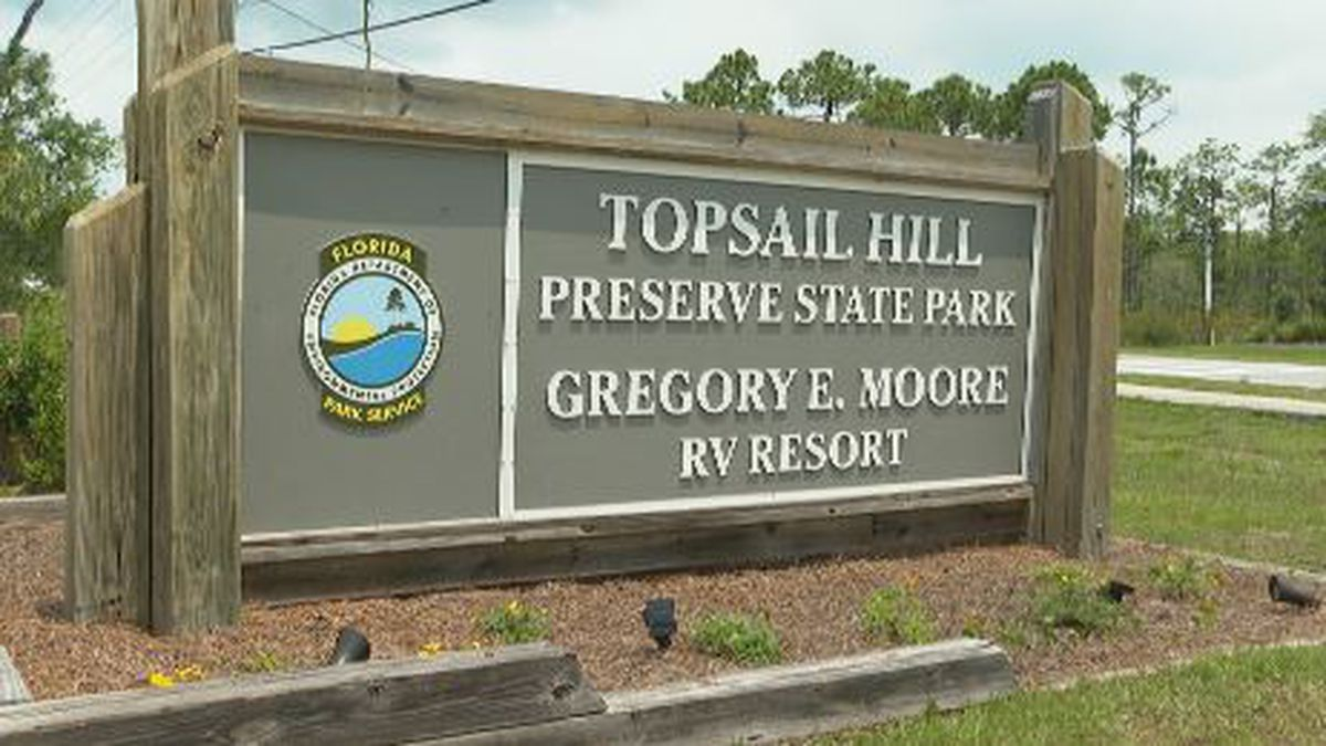 An investigation is ongoing to find out who cut down trees in Topsail Hill Preserve State Park. (WJHG/WECP)