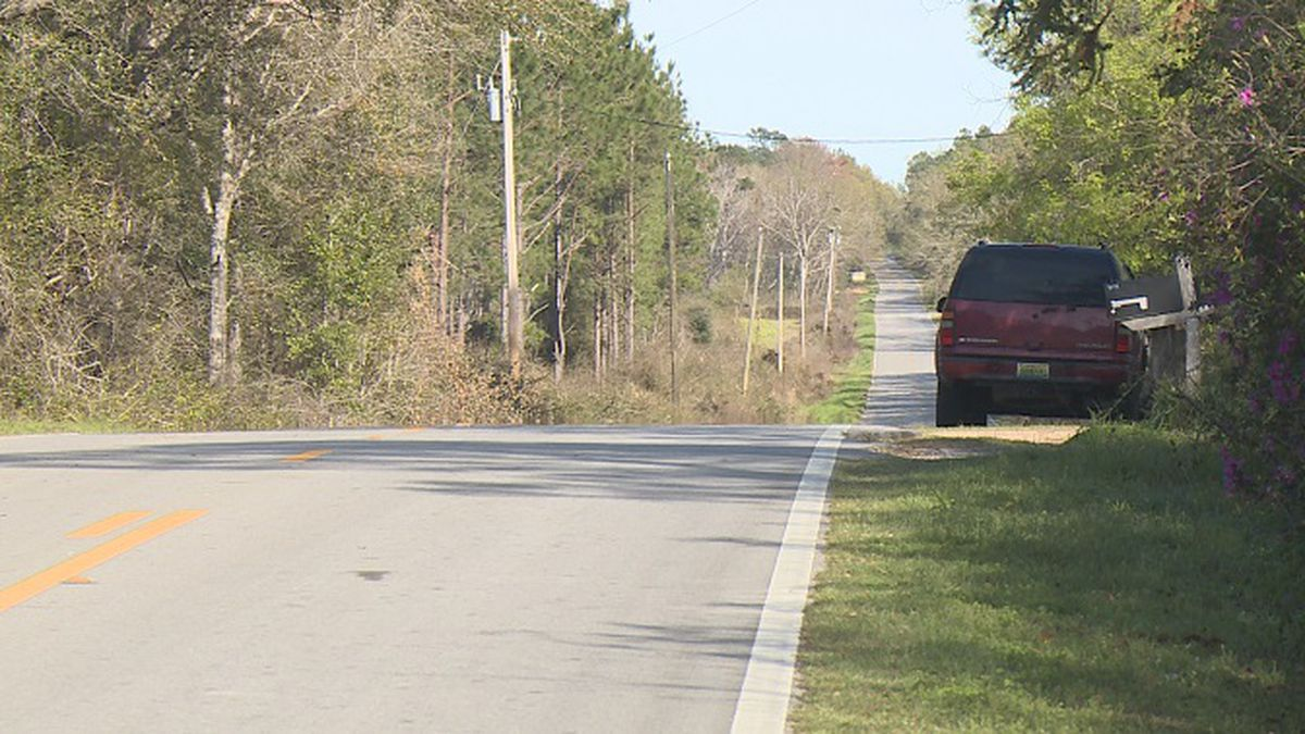 The road near where the dog attack occurred. (WJHG/WECP) -