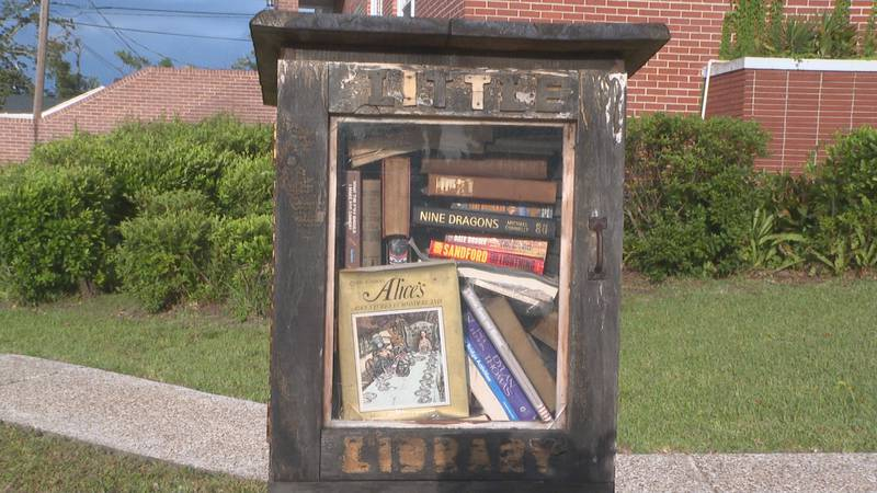 One local volunteer organization has a plan to help collect books for kids in Northwest Florida...