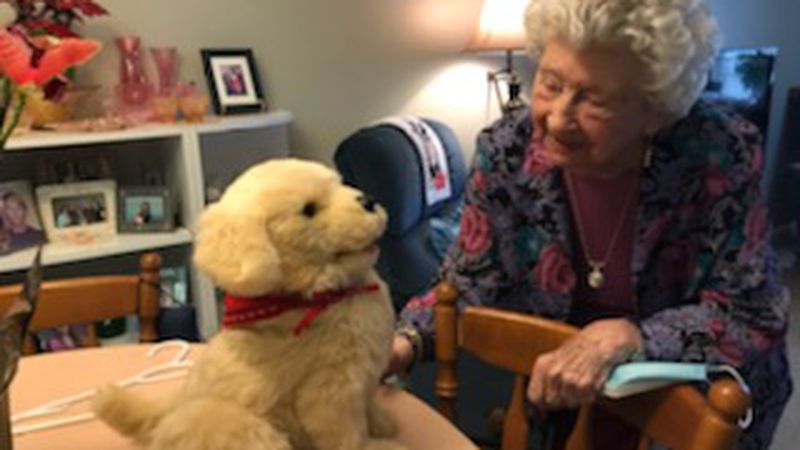 A local nursing home's residents are receiving some cheer thanks to some new robotic friends.