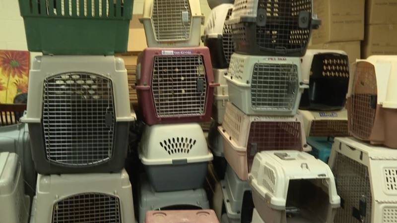 Empty crates at the Humane Society. (WJHG/WECP)